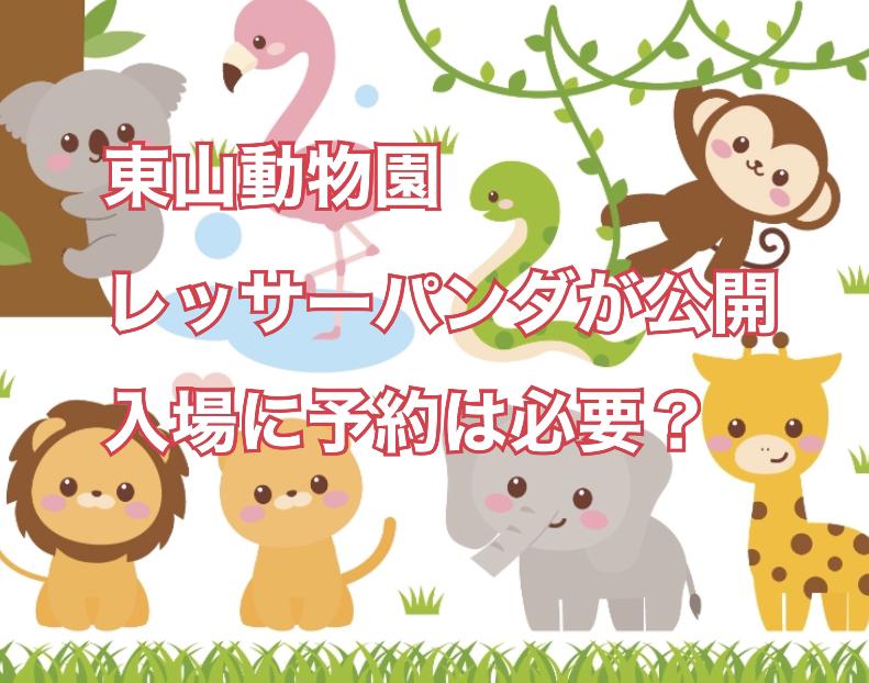 名古屋 東山動植物園でレッサーパンダが公開!入場に予約は必要?